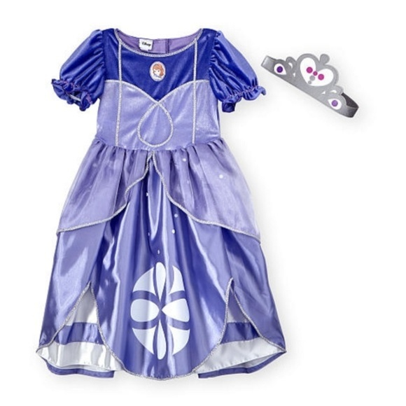 Disney Costumes | Deluxe Sofia The First Costume Dress Up Gown Crown ...